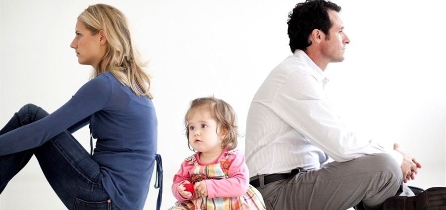 La Mediazione familiare: Teoria e tecnica. Master breve